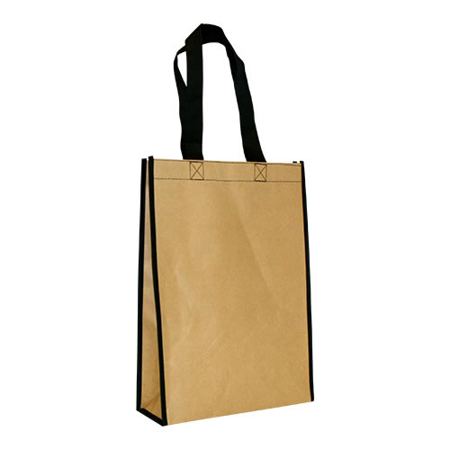 ECO bag (kraft + non woven)